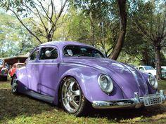 Nice Purple Bug !