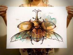 Coleoptera by Mc Baldassari