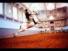 NATURE | The World Famous Lipizzaner Stallions | Legendary White Stallions | PBS - YouTube