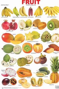 """23 Things You Probably Didn't Know About The Plant Kingdom """"Fruit"""" is a botanical term and """"vegetable"""" is a culinary term, so certain vegetation such as tomatoes, green beans, eggplants, and cucumbers could be called either fruits or vegetables. Fruit And Veg, Fruits And Vegetables, Winter Vegetables, Fruit Names, Food Vocabulary, English Vocabulary, Food Charts, English Food, Learn English"""
