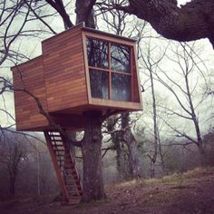 15 Ridiculously cool tree houses. this would make a wonderful bird watching place to take pictures and watch the birds:)