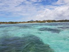 Trip to Ile aux Cerf from Trou d'eau douce. Go to any skipper at the port. Never accept the price they give you, try to get them down by Rs400 for every price they offer. Different packages available. Trip+Waterfall+Lunch+Return = +/- Rs1000 per person