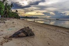 NATURE PHILIPPINES