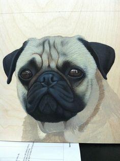 Pug in acrylic