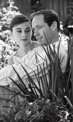 """rareaudreyhepburn: """"Audrey Hepburn and husband Mel Ferrer photographed by Don Ornitz at their Beverly Hills home in California, """" Audrey Hepburn Photos, Audrey Hepburn Style, Audrey Hepburn Husband, Golden Age Of Hollywood, Vintage Hollywood, Classic Hollywood, Hollywood Couples, Nostalgia, Star Wars"""