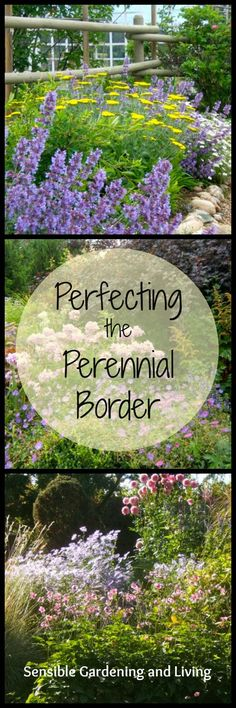 Perfecting the Perennial Border at Sensible Gardening and Living