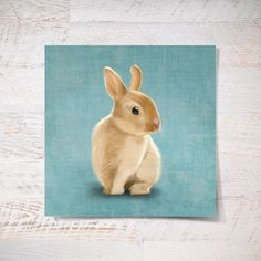 Mr Bunny print bunny poster 10x10 small rabbit print gift funny gift print portrait wall art print wall decor kids children illustration (30.00 USD) by SparaFuori