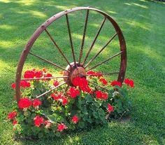 Rote Blumen erzielen auch allein eine tolle Wirkung in Ihrem Garten. Aber in Kombination mit natürlicher Dekoration, wie mit einem alten Wagenrad, verleihen sie Ihrem Garten einen nostalgischen Charme.                                                                                                                                                      More