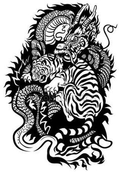 Dragon And Tiger Tattoo Black White
