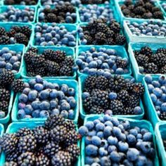 Farmers Market..blueberries & blackberries