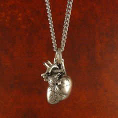 "Anatomical Heart Necklace Sterling Silver Anatomical Heart Pendant on 24"" Antique Silver Chain"