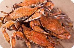 WOW! Ive been using this new weight loss product sponsored by Pinterest! It worked for me and I didnt even change my diet! I lost like 26 pounds,Check out the image to see the website, Maryland steamed crabs!