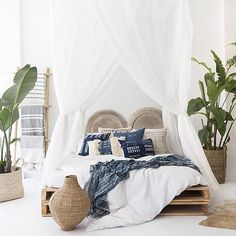 light airy and peaceful brought to life with vibrant foliage. natural desert style bedroom