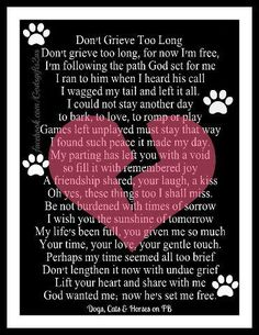 In honor of my precious Bella<3