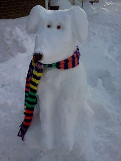 snow puppy...