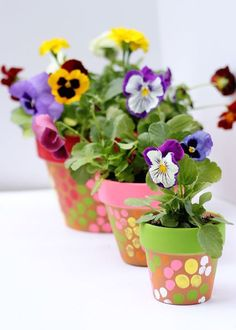 Fingerpainted flower pots! What a great springtime craft for kids and great gift for them to make and give