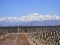 Norton Winery in Mendoza, Argentina