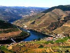Go through the Douro Valley on a boat.  8 day cruise...Douro Marina in Vila Nova de Gaia, Porto