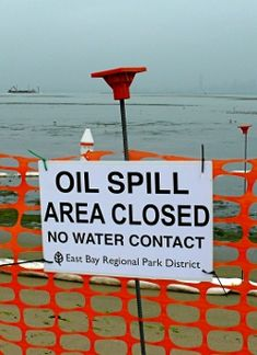 Oil Spill Activity: Fourth/Fifth Grade Science Classroom, Teaching Science, Science Education, Oil Spill Clean Up, Earth Month, Citizen Science, Teacher Lesson Plans, Stem Science, Class Activities