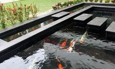 Integrated_koi_pond_cum_goldfish_design__construction