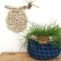Airplants and succulents are my latest obsession so incorporating them in with my crocheting makes it a win win situation  #bunyetskahandmade #crochet #crochetwallhanging #crochetbasket #airplant #succulent #wallhanging #tshirtyarn #twine #driftwood #leather #crochetdecor