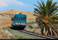 RailPictures.Net Photo: ALn668-3007 Trenitalia ALn668 at Falconara, Italy by Francesco Virgillito