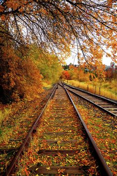 Train Tracks Photograph - Switching To Autumn by David Patterson Train Pictures, Fall Pictures, Nature Pictures, Photo Background Images, Photo Backgrounds, Autumn Scenes, Autumn Aesthetic, Train Tracks, Trains