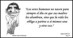 Garcia Marquez Ecards, Memes, Author Quotes, Gabriel Garcia Marquez, Writers, Art, E Cards, Animal Jokes, Meme