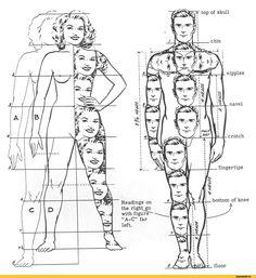 пропорции человеческого тела: 11 тыс изображений найдено в Яндекс.Картинках