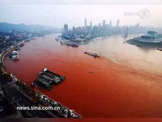 Prophecy Sign:  Waters will be turned blood red - this is happening; news report can't explain it Save The Planet, Our Planet, Our World, Planet Earth, Water Pollution, Plastic Pollution, Jesus Is Coming, Wesen, Mystery