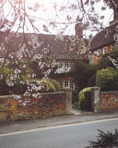 A Joyful Journey — Somerset,  Ramona @monalogue.