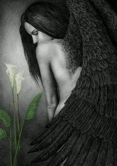 Dark angel fallen