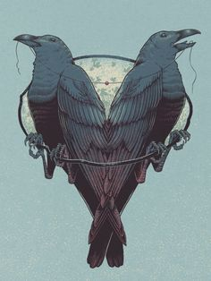 Love for Life by Brian Luong // Here's a Valentine's Day themed illustration based off of the idea that ravens are monogamous. (heart shaped anatomically out of animal line drawings) wild Crow Art, Raven Art, Bird Art, Hugin Munin Tattoo, Corvo Tattoo, Illustrations, Illustration Art, Mononoke, Inspiration Artistique