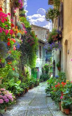 Flowers adorn the Medieval buildings along the narrow streets of Spello or Hispellum, Umbria, Italy.