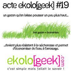 ekologeek 19