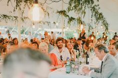 lights and overhanging greenery in marquee