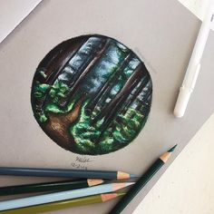Forest drawing with prismacolor pencils