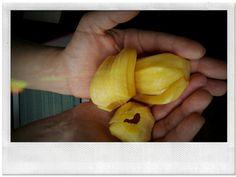 Jack Fruit ~ Bangkok 2012