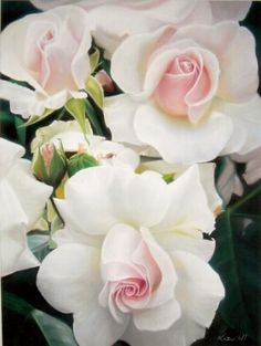 Gorgeous white roses with pink hearts  so beautiful,, unresistable,,  سبحان الله ،،