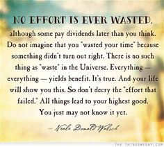 No effort is ever wasted although some pay dividends later than you think do not image that you wasted your time because something didn't turn out right there is no such thing as waste in the universe