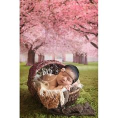 Photo backdrop Baby Drop photography background BD2062 great photo prop, 3'x4' High Quality Printing, Roll up for Easy Storage Photo Prop Carpet Mat PHOTOGRAPHY OUTLET,http://www.amazon.com/dp/B00HVUDUE0/ref=cm_sw_r_pi_dp_6sHdtb15NQ11HN25