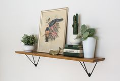Hairpin shelf bracket – Hairpinlegs.com