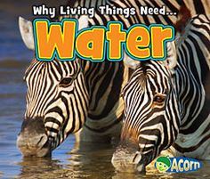 water, homeschool scienc, science books, books for kids