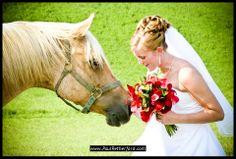 Weddbook ♥ wedding with pets