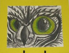Kassidi's owl for the pastel project in the Winter session at YEStudio.
