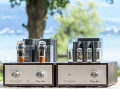 Silver 10Y line preamplifier in Smoked Eucalyptus by VinylSavor Thomas Mayer.  Beautiful work.
