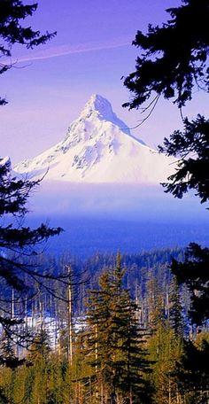Snow covered Mt. Washington, Oregon.