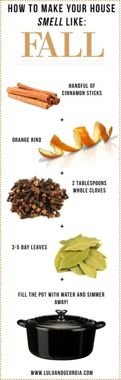 "an-earth-witch: ""Found this recipe via http://www.luluandgeorgia.com/blog/2015/09/how-to-make-your-house-smell-like-fall.html. I haven't tried it yet, but I think I want to soon! I just need to buy more bay leaves - I think I'm fresh out. If I..."