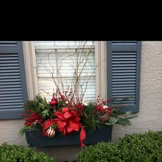 Gorgeous winter window boxes More