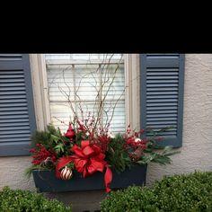 Gorgeous winter window boxes